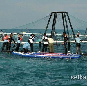 Susi Bidik Produksi 800 Ton Ikan dari KJA Lepas Pantai Pertama RI