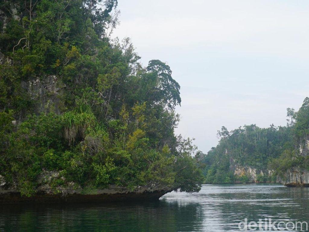 Bukan Phi-phi Island, Ini Teluk Kabui di Raja Ampat