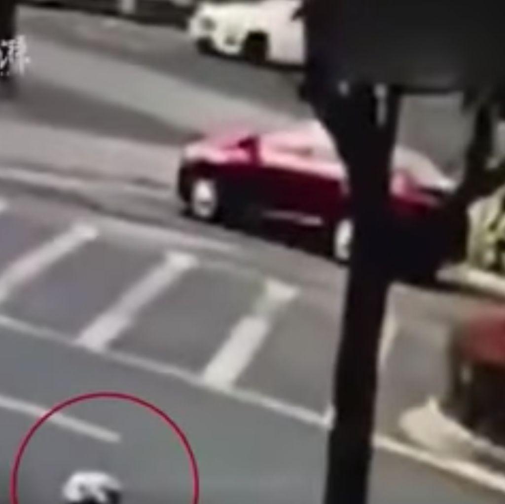 Duh! Bayi Menggelinding Saat Pintu Mobil Terbuka di Tengah Jalan