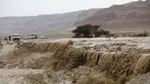 Video Saat Palestina dan Israel Dilanda Banjir Besar