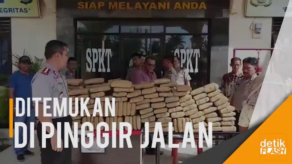 209 Kilogram Ganja Tak Bertuan Ditemukan Petani di Sumut