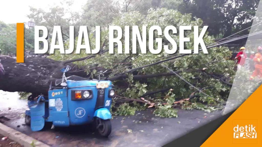 Brakk! Pohon di Samping Istiqlal Tumbang Timpa Bajaj dan Motor