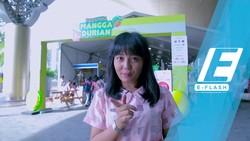 Ada Sticky Rice Bego di Festival Mangga Durian, Apa Tuh?