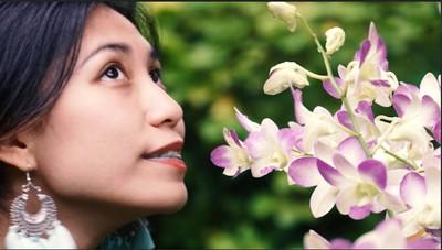 Bertemu 1001 Jenis Anggrek di Singapore Botanic Gardens