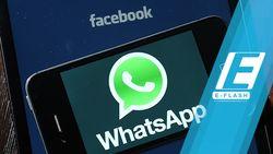 Asyik! Sebentar Lagi Insta Stories Bisa Dibagikan ke WhatsApp
