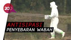Ada Wabah Flu Burung, Jepang Musnahkan Puluhan Ribu Unggas