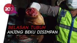 Polisi Gerebek Rumah Jagal Anjing di Bandung!