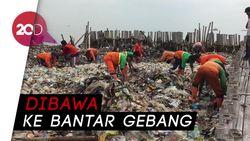 Lautan Sampah di Teluk Jakarta Dibersihkan