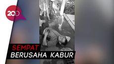 Video Penembakan Bandar Narkoba di Medan