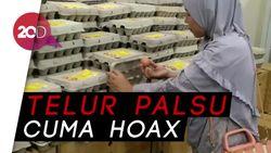Dinas Ketahanan Pangan Pastikan Telur Ayam di DKI Tulen!