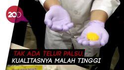 Hasil Uji Lab: Telur di Pasar Johar Baru Kualitas Tinggi