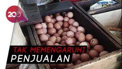 Heboh Isu Telur Palsu, Begini Nasib Pedagang Telur