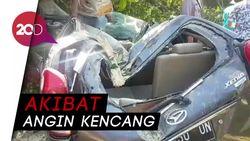 Detik-detik Pohon Tumbang dan Rusak Belasan Mobil