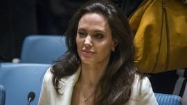 Angelina Jolie 'Pinjamkan' Suara untuk Bayi Gajah