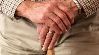 Mulai Tahun Depan Pensiunan PNS Dapat THR