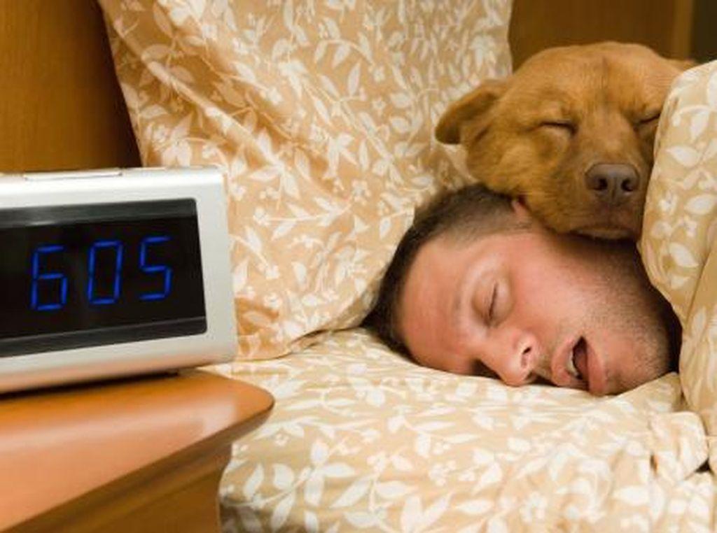4 Tips Cegah Ngiler Saat Tidur Malam