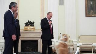 Gonggongan Anjing Putin Bikin Wartawan Jepang Gugup
