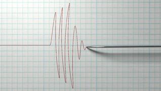 Gempa 6,6 SR Putuskan Aliran Listrik di Mukomuko