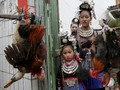 Kemeriahan Tradisi Tarik Kepala Ayam di China