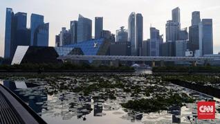 Singapura Bangun Taman Teduh di Atap Halte Bus
