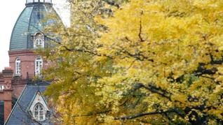 Sapporo Tawarkan Keindahan Musim Gugur nan Romantis