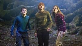 Musik Lima Seri Awal Harry Potter Dikemas dalam Versi Vinil