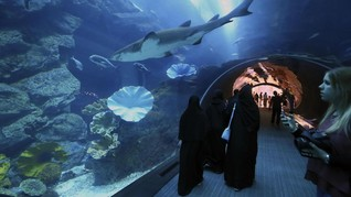 Tahun Depan Penumpang Bandara Dubai Wajib Masuk 'Akuarium'