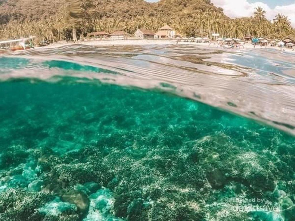 Beginilah Keelokan Surga Bawah Laut dari Nusa Penida