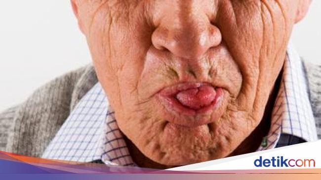 101+ Gambar Babi Monyong Paling Keren
