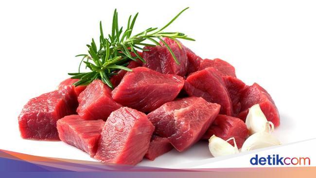 Protein Nabati Vs Hewani Mana Yang Lebih Baik Untuk Otot