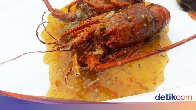 Miting Lobster Puas Makan Kepiting Papua Jumbo Berdaging Tebal