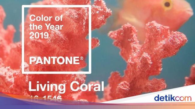Ini Tren Warna 2019 dari Pantone Living Coral
