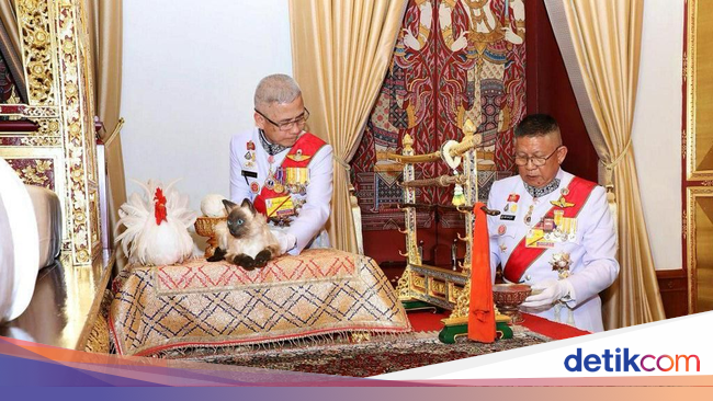 Istana Jawab Rumor Raja Thailand Pakai Boneka Kucing Saat