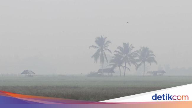 GIAA Pesawat dari Palembang Batal Mendarat di Jambi Gara-gara Kabut Asap