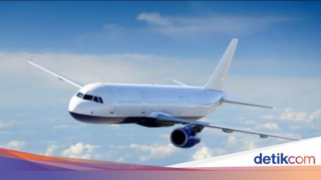 Mulai Hari Ini Tiket Pesawat Turun Cek Di Sini Detailnya