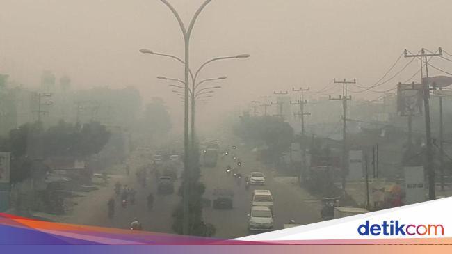 Kabut Asap Karhutla Tiga Kampus Di Riau Diliburkan