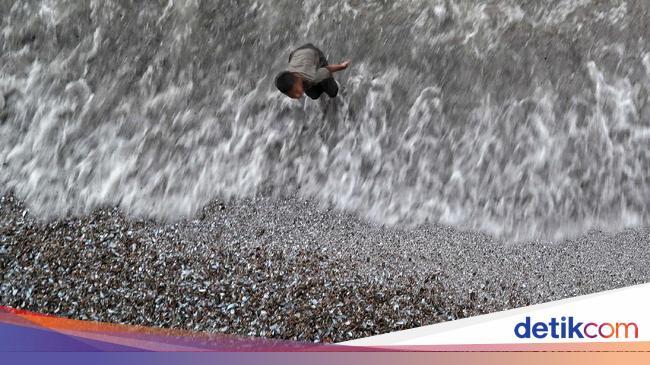 Kekhawatiran Potensi Rob di Pesisir Utara Jakarta