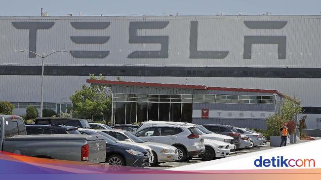 Tesla Pilih Bikin Pabrik di India, Ini Saran buat