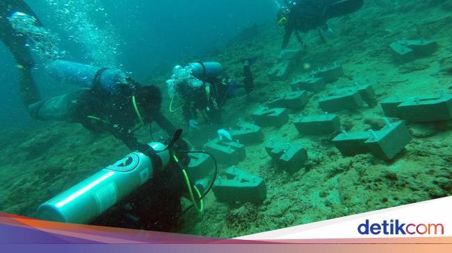 Begini Potret Penyelamatan Terumbu Karang di Aceh