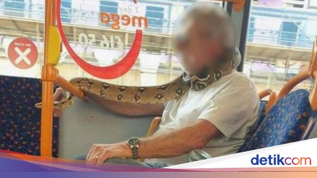 Jangan Ditiru, Pria Ini Pakai Ular Buat Masker Pas Naik Bus