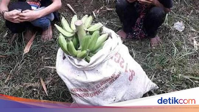 Miris! 5 Kasus Pencurian Makanan Ini Dilakukan Karena Kelaparan