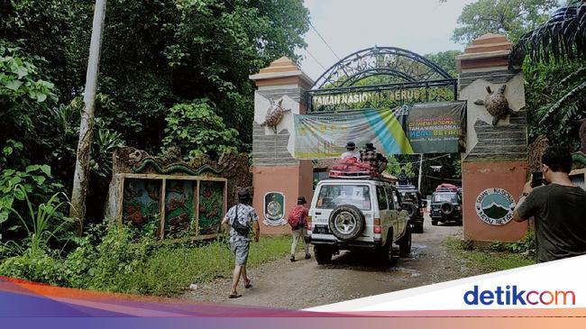 Taman Nasional Meru Betiri Menunggu Para Petualang