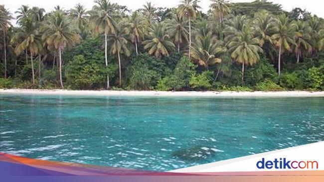 Wisata Ke Taman Laut Pulau Rani-Mapia