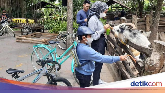 Bikin Senang Pengunjung, GL Zoo Yogya Ajak Bersepeda Sembari Berwisata