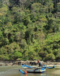 Mudik ke Banyuwangi, Ini 20 Destinasi yang Instagrammable