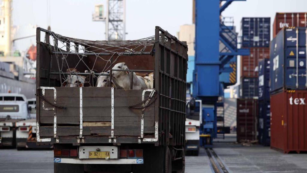 Pedagang Dorong Pemerintah Sederhanakan Distribusi Barang