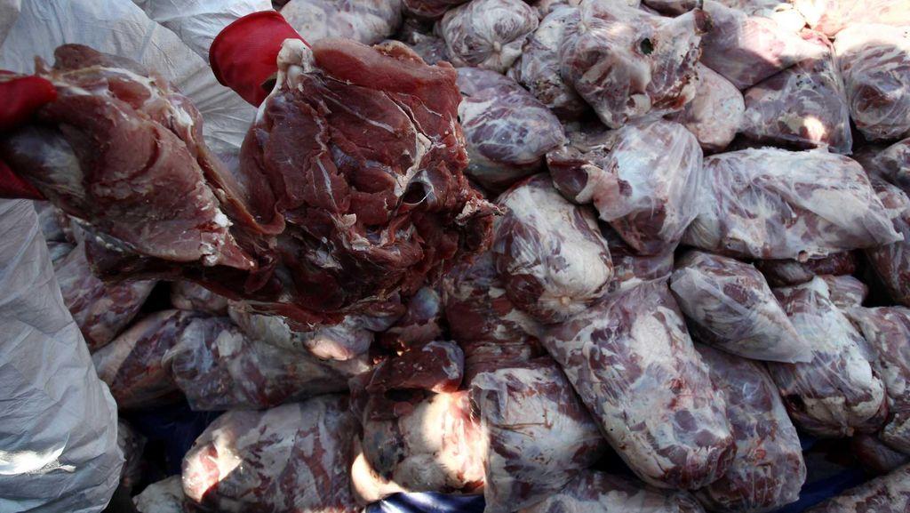 Kementan Sita 2 Ton Daging Celeng, Dikirim dari Jambi Menuju Bekasi