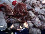11 Ton Daging Celeng Selundupan Sumatera ke Jawa Dimusnahkan