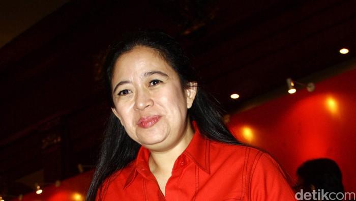 Foto: Puan Maharani. (Lamhot Aritonang/detikcom).