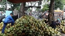 Dukungan Pembiayaan Dinilai Bisa Dorong Laju Ekspor Kelapa RI